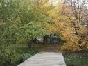 Comenius Garten