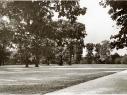 Hasenheide 1953