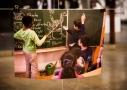So könnte die Pokémonkunde in den Schulen aussehen. Foto: János Szombati