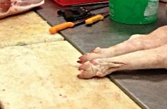 Foto: Schweinefüße auf dem Metzertisch