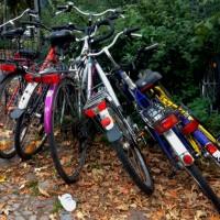 Nachgefragt: Was tut der Bezirk für Radfahrer?
