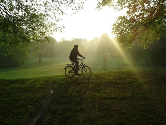 Grüne Wiesen und freie Fahrt - für viele Fahrräder sieht die Realität anders aus.