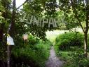 NKnet_Junipark02