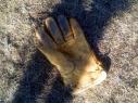 NK_Net_Handschuhe-10-Kopie