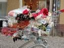 nk_net_einkaufswagen-23