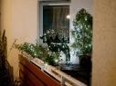 weihnachtsbalkone_yana_wernicke_07