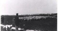 Das Tempelhofer Feld um 1900, Foto: Museum Neukölln