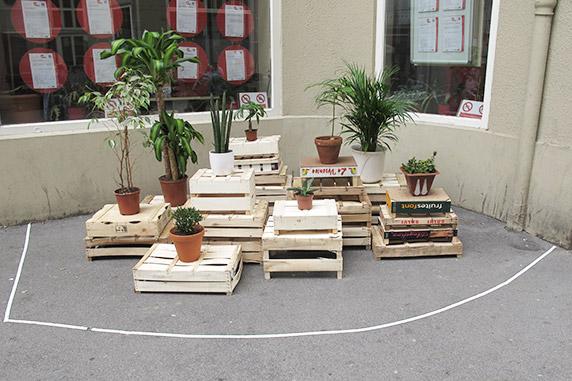 Eine Installation mit Zimmerpflanzen