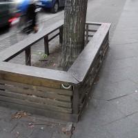 Bezirksamt versus Baumscheiben