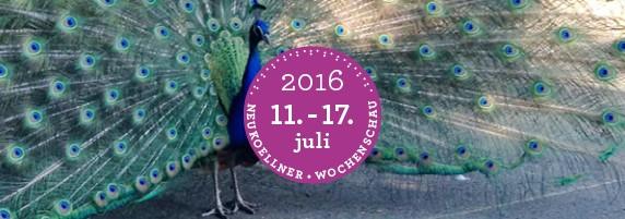 wochenschau_28-16-big