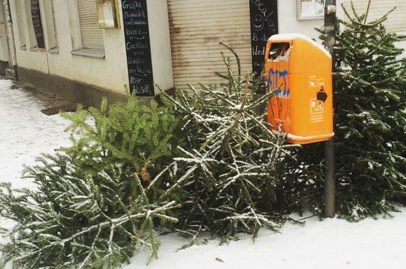 Winterwald, Selchower Straße